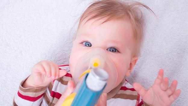 Propiedades del trigo contra el asma infantil