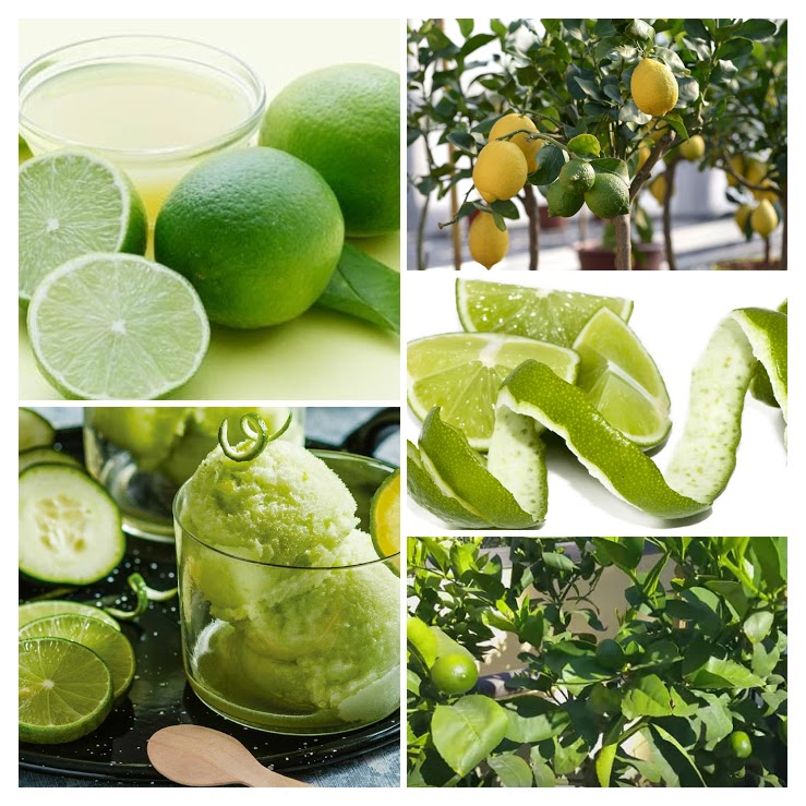 Propiedades curativas del Limon